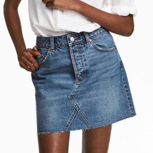 H&M- Becca Button Fly Denim Mini Skirt